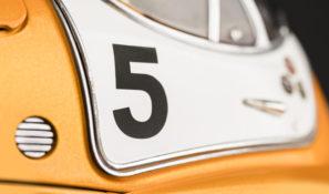 Close-up-Racing-Flea-No5-2785x1659px